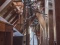 Sturmmühle Mühle